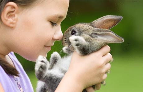Kinderen en dieren: jong geleerd is oud gedaan