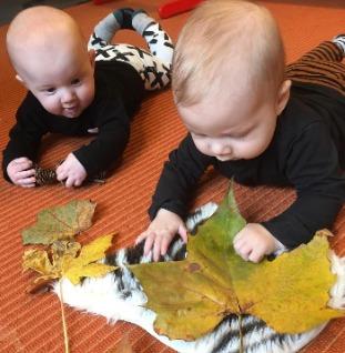 babygroep ontdekt het thema herfst